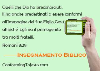 Romani 8:29 - Poiche` quelli che Egli ha preconosciuti, li ha anche predestinati ad essere conformi all'immagine del Suo Figlio, affinche` Egli sia il primogenito fra molti fratelli - ConformingToJesus.com