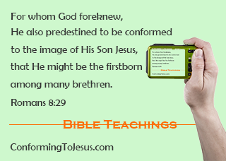 Bible Scriptures - Romans 8:29 - For whom He foreknew, He also predestined to be conformed to the image of His Son, that He might be the firstborn among many brethren - ConformingToJesus.com