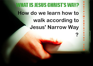 What is Jesus Christ's Way? How do we learn how to walk according to Jesus' Narrow Way?